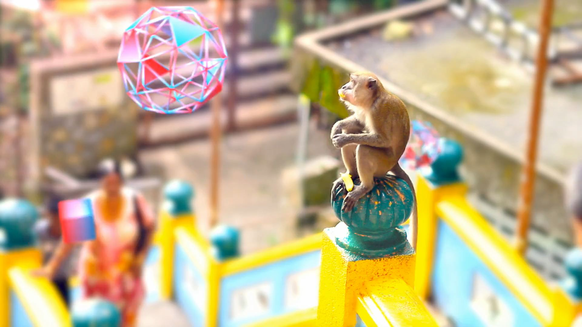 Live-action monkey looking at motion graphics flying past