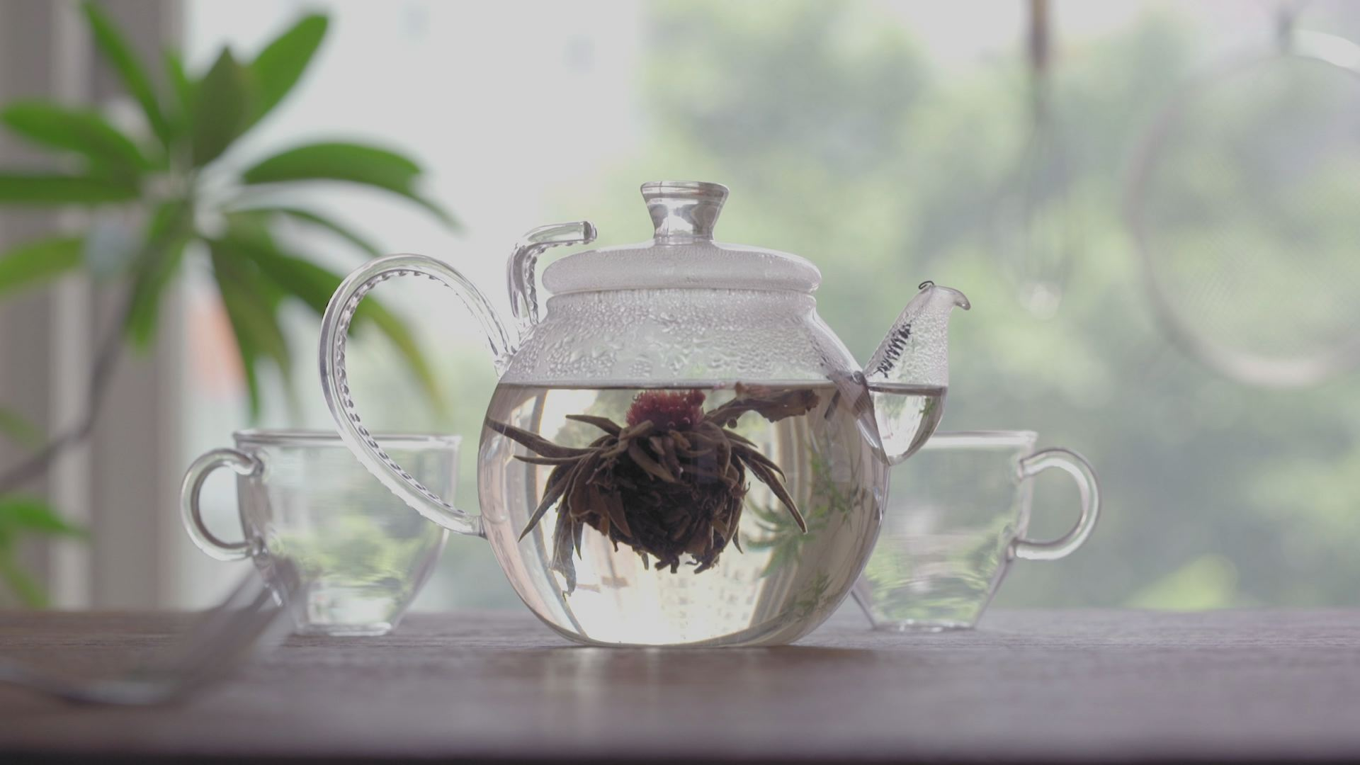 Live-action tea pot brewing
